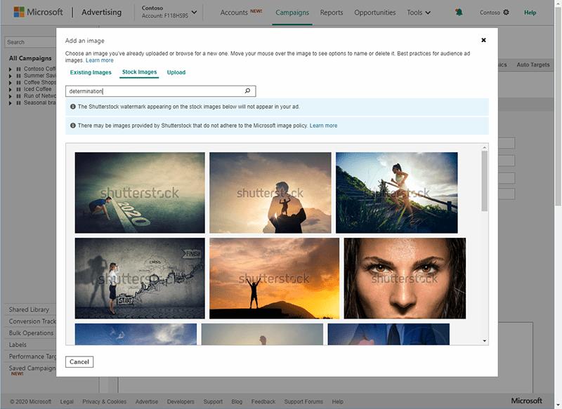 Bing Ads Shutterstock Microsoft
