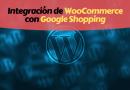 WordPress Google Shopping