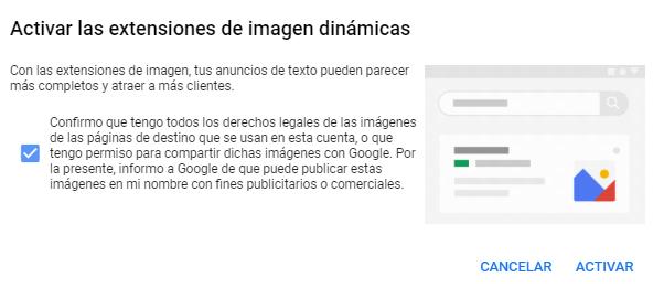 Extensión Imagen Google Ads