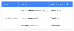 Google Ads Variantes Cercanas