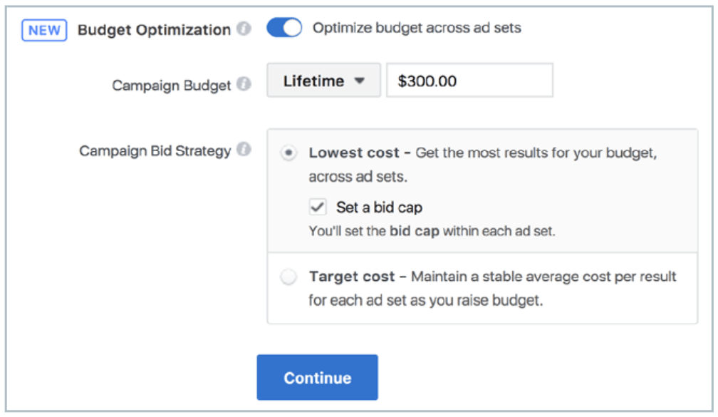Facebook Ads Campaign Budget
