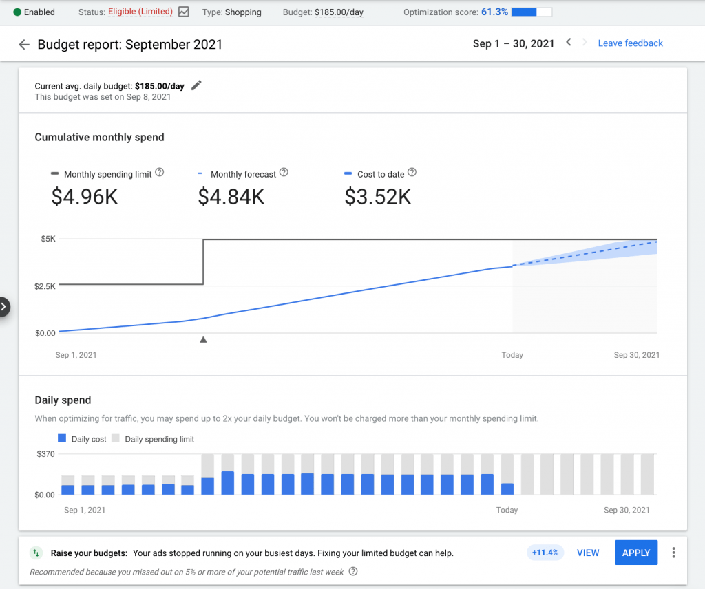 Presupuesto Google Ads